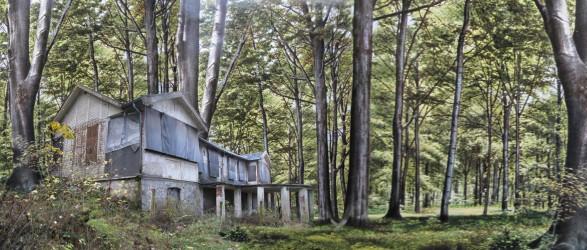 1 Waldhaus_40x94cm