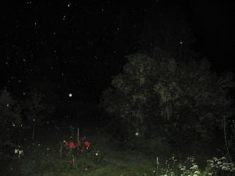 4-Nachtzauber_60x80cm