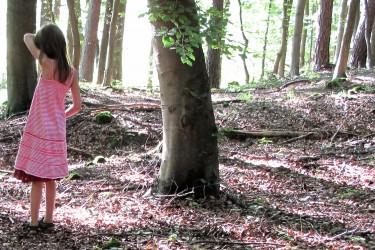 8 Verstecken_im_Wald_20x30cm