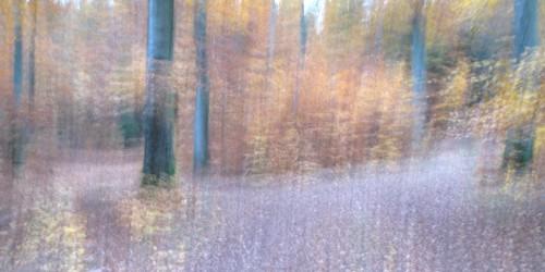 20 Panorama_40x80cm