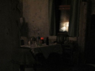 9 nachts-Waldhaus 18x24